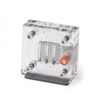 Methanol Fuel Cell