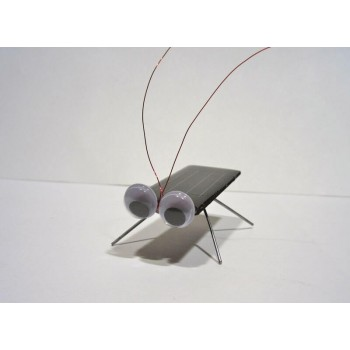 Solar Cockroach Kit