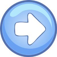 Next Section Button
