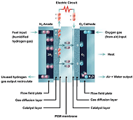Fuel Cell Characterization