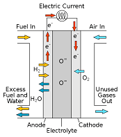 Transport of Electrons through the Fuel Cell